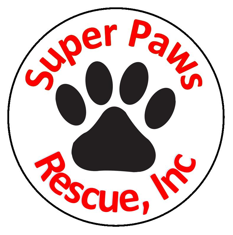Super Paws Rescue